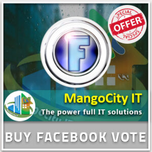 Buy Facebook Vote