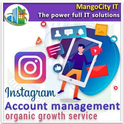 Instagram Account Management Growth Service